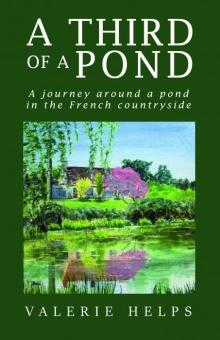 A Third of a Pond