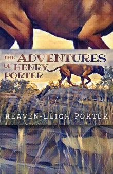 The Adventures of Henry Porter