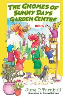 The Gnomes of Sunny Days Garden Centre - Book 2