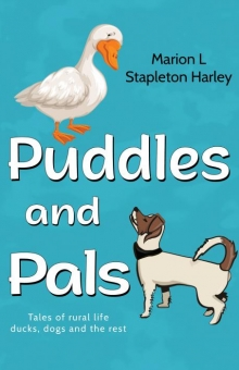 Puddles and Pals