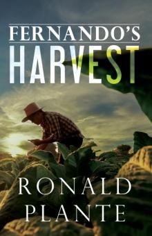 Fernando's Harvest