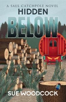 Hidden Below - A Saul Catchpole Novel