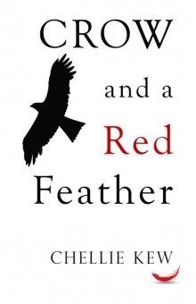 Crow and a Red Feather